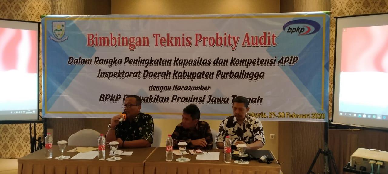 Bintek Probity Audit, Tingkatkan Kapasitas dan Kompetensi APIP
